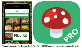 Pilze123